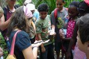 Zanzibar school trip