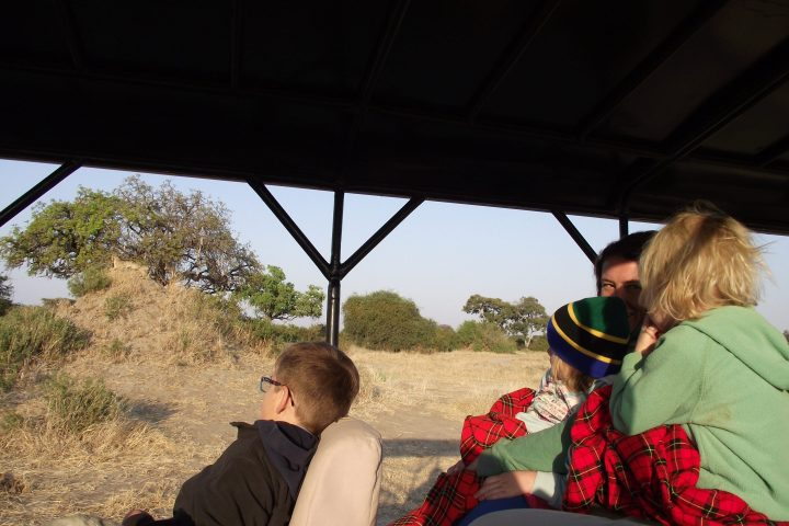 Family game drive with cheetah
