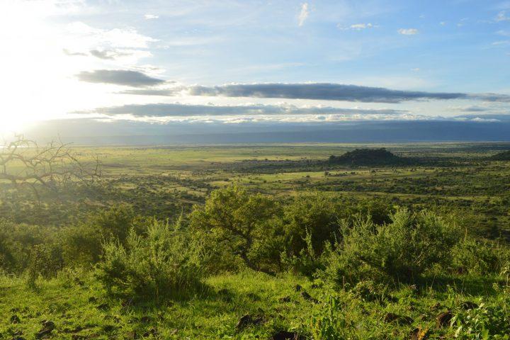 Rift Valley View