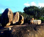 Masai Kopjes Serengeti