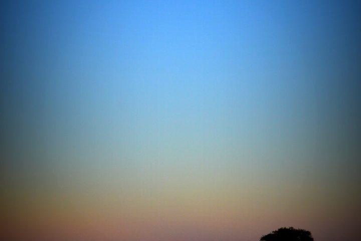 Serengeti Moonrise