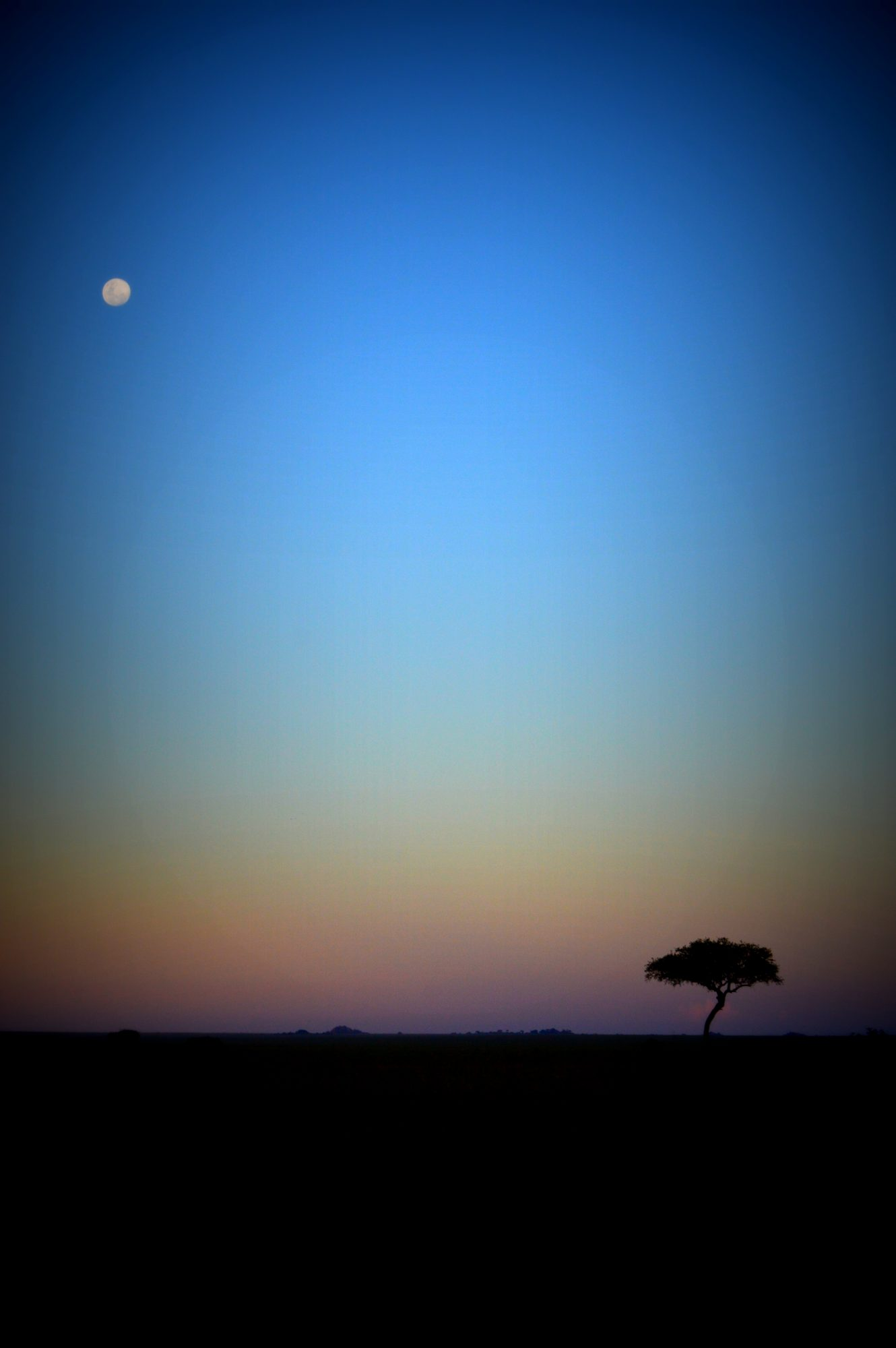 Serengeti Moonrise