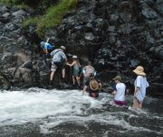 Crossing the mountain stream