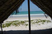Zanzibar Beach Banda